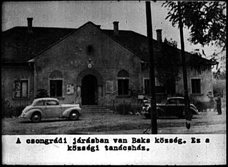 dia81-1954